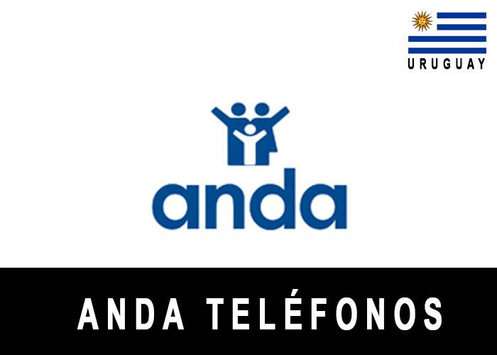 Teléfono de ANDA